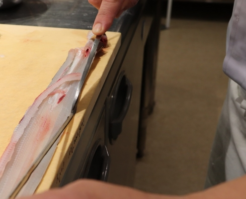 How to filet anago