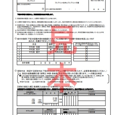 100000JPY Support Payments Application Form