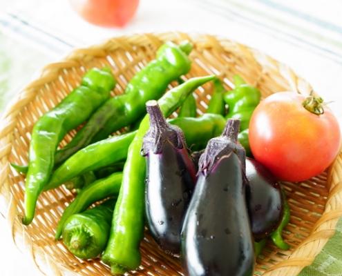 Japanese Vegetable