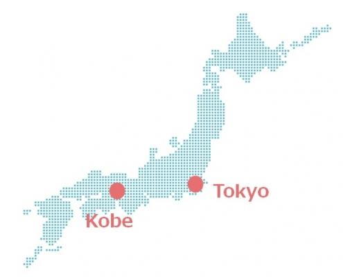 Kobe Wagyu