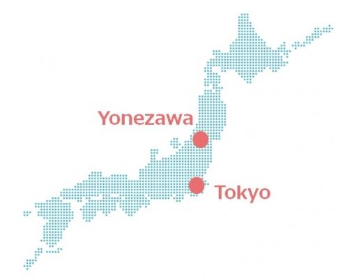 Yonezawa Wagyu